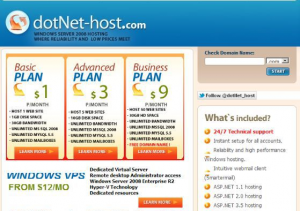 Screenshot of website from dufunct web hosting company dotNet-Host.com
