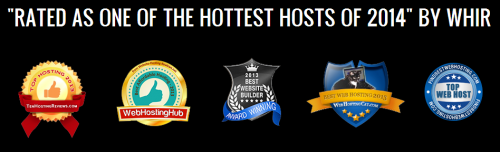 Screenshot of the webhost Herolocity homepage showing bling icons