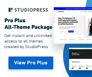 """Pro Plus All-Theme Package Active 12/20 - 1/3"""" border="""